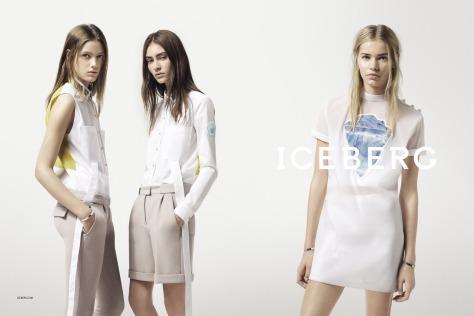 2014+SS+Iceberg_site+03